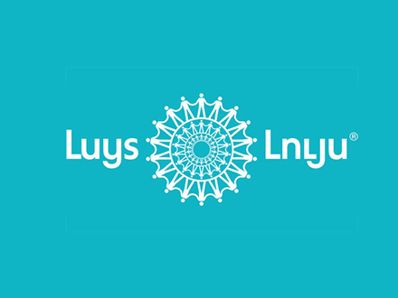 Luys Foundation